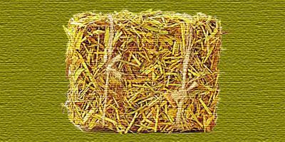 Case Ecologiche in balle di paglia